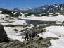 Alpi Lepontine 8-10 luglio