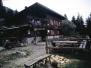 Monte Pizzocco giugno 1991