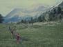 Cima Marmotta luglio 1991