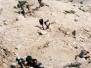 Settimana alpinistica 2006 Attorno al Civetta Pelmo